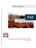 Prospecto Curso Jurisprudencia CSJN