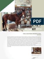 DyD Mediakit 2014
