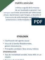 Estomatitis vesicular kambucho.pptx
