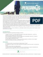 Peregrinos- Equipaje II