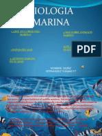 BIOLOGIA MARINA (1).ppt