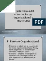 Características Del Entorno, Forma Organizacional y Efectividad