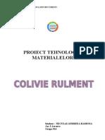 Proiect Tm Colivie Rulment