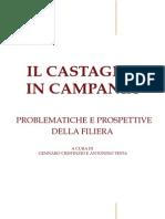 Il Castagno