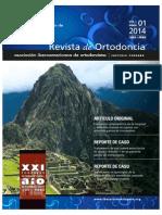 Revista de la AIO-Perú  VOL1 N° 1 - 2014