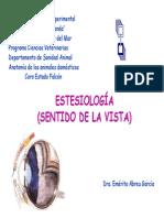 Estesiologia Ojo