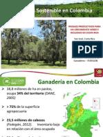 Andres Colombia - Ganadería Sostenible (20mayo2014)