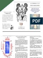 coronilla.pdf