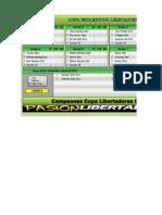 Copa Bridgestone Libertadores 2014 v1