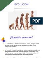 1.4. Evolución