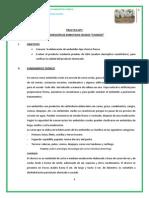 Imprimir 1er Informe de Carnes