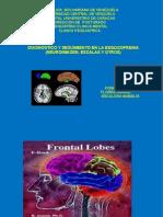 Seminario de Neuroimagen de Esquizofrenia