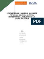 1.-Visita Tecnica Iscaycruz Paneles