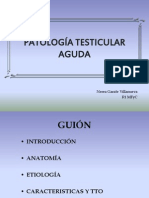 Patologc3ada Testicular Aguda 3