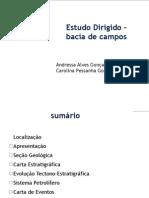 92684045 Estudo Dirigido Bacia de Campos