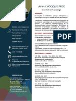 Curriculum Vitae - Adan Choqque Arce