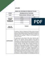 Programa Academico Petroleos