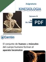 Kineciologia