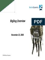 BigDog Overview