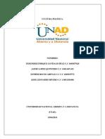 Trabajocolaborativo1 Culturapolitica 90007 1548 (2)