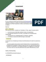 ejercicio-perfil-vocacional.pdf