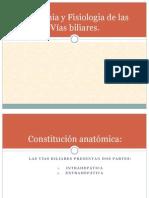 anato y fisio de vias biliares.pptx