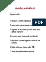 Informatica Pt Afaceri Introducere 2012