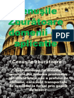 Cenusi Zburatoare Domanii de Aplicatie 2013