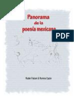 PANORAMA DE LA POESÍA MEXICANA
