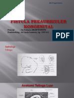 EDIT Fistula