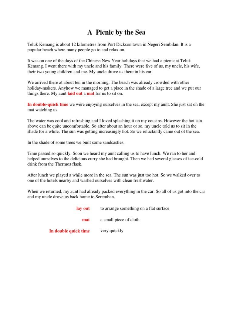 picnic essay