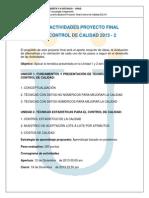 P Final 2013-2 Control de Calidad