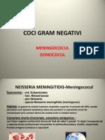 Curs 3 - Coci Gram Negativi Refacut