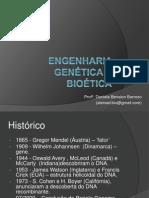 0 216 Ensino Fundamental 8a Serie Biologia Daniela Benaion Barroso Engenharia Genetica1 (2)