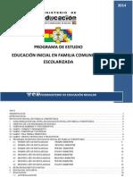 programa de estudio para inicial.pdf