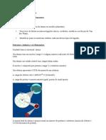 Aula02 EstruturaAtomica Elementos