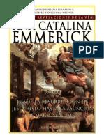 Visiones y Revelaciones de Ana Catalina Emmerich - Tomo 12