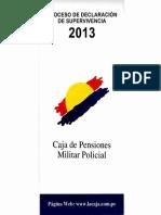 Info Ddjj 2013