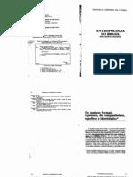 89295378 Carneiro Da Cunha Manuela Antropologia Do Brasil Mito Historia Etnicidade Sao Paulo