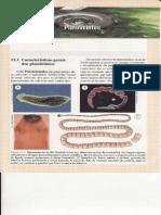 CAP.11-PLATELMINTOS.pdf