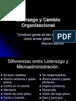 Liderazgo y Cambio Organizacional Conceptos Villahermosa