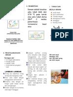 leafleT demam2