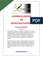 Lecciones de Sabiduria Por Gonzalo Gallo Gonzalez - Crecer en Desapego
