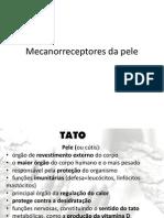 Mecanorreceptores Da Pele