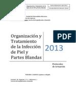 InfecciónPielPartesBlandas Mayo 2013(1)