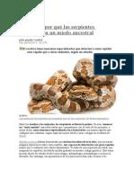 Averiguan Por Qué Las Serpientes Despiertan Un Miedo Ancestral