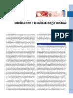 Murray 6ta - Capitulo 1.PDF