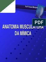 Anatomia (Músculos Da Mimica)