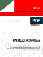 07 Habilidades Cognitivas[1]