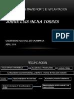 Fecundacion Clase 2014